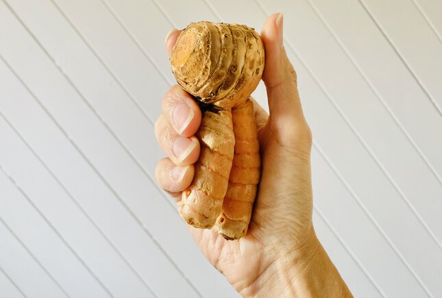 turmeric for stress induced anxiety
